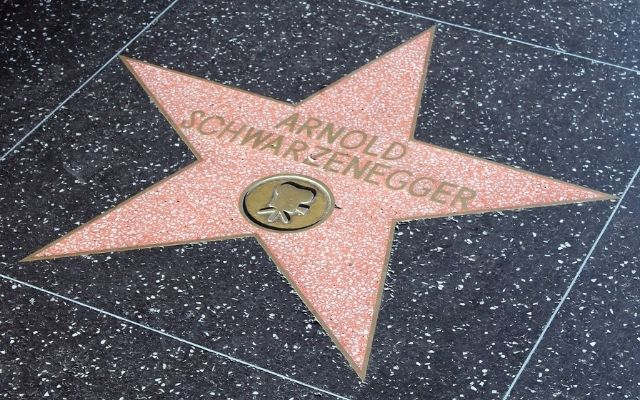 Beer Puns Arnold Schwarzenegger Hollywood Actor and Former Governor of Calisfornia